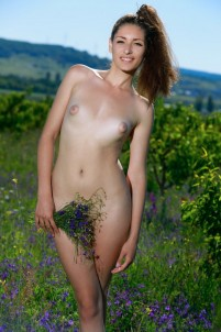 Naked cutie caresses her curves with fresh flowers