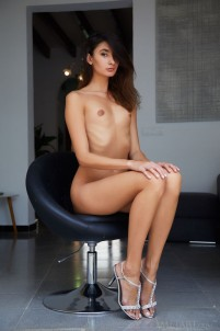 Naked brunette shows the beauty of her pussy